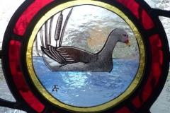 Moorhen roundel